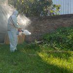 Dengue: Intensa fumigación del Municipio y Zoonosis Provincial