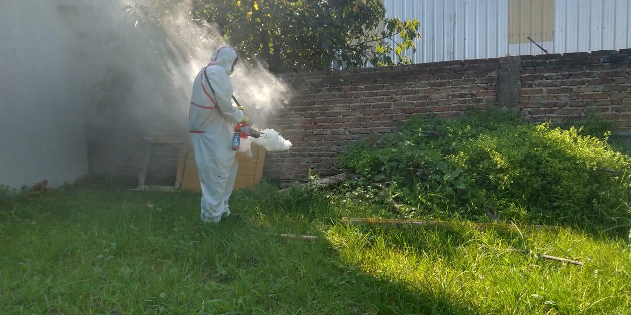 Fumigación Dengue 1