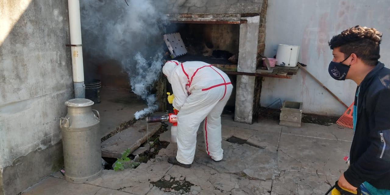Fumigación Dengue 2